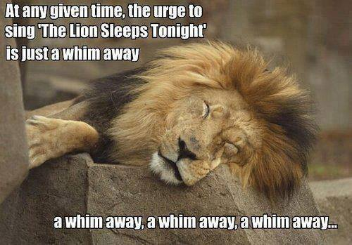 A whim away