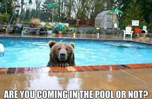 Are you coming in the pool or not