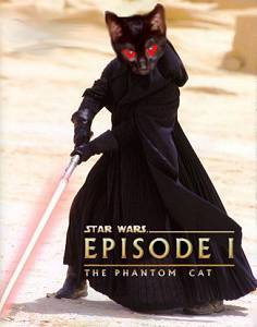 The advert for Cats with Lightsabers