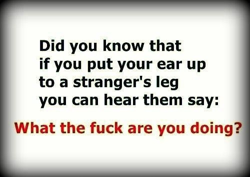 Did you know that if you put your ear up to a strangers leg