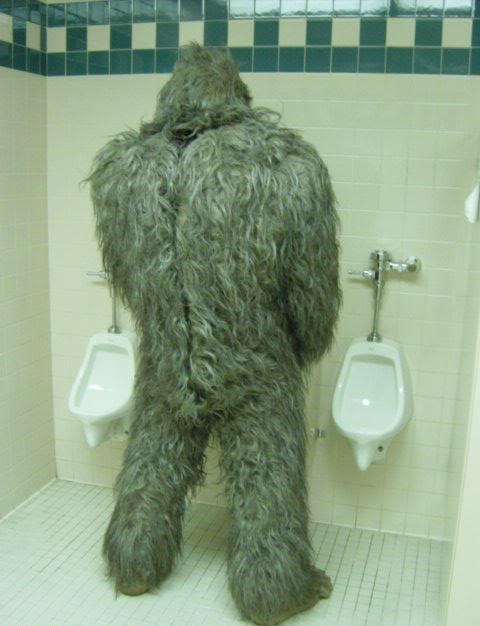 Even Chewbacca has to pee