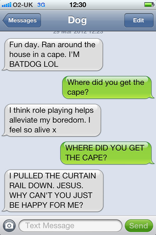 Fun day as Batdog