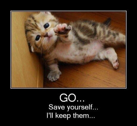 GO save yourself...