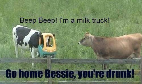 Go home Bessie youre drunk