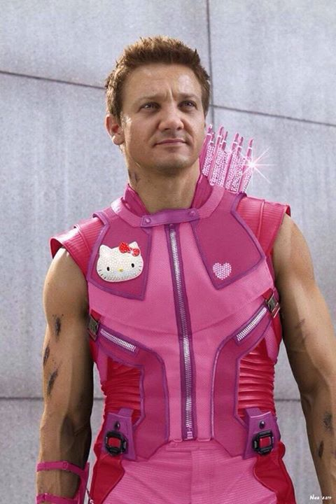 Hawkeye Kitty