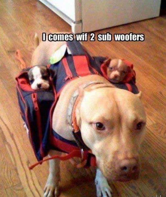 I Comes Wif 2 Sub Woofers