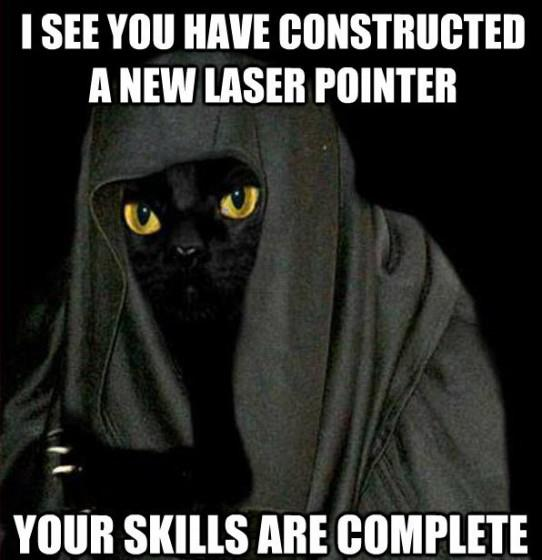 I see you have constructed a new lazer pointer