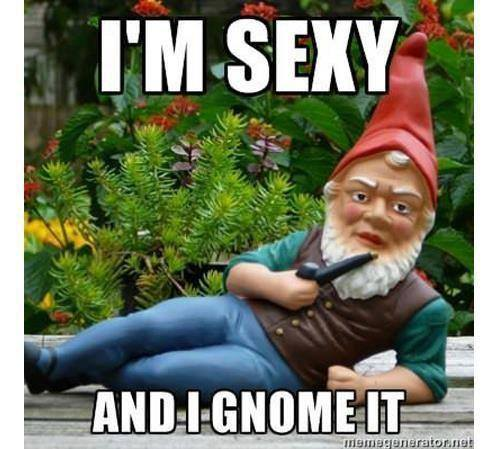 Im Sexy and I gnome it