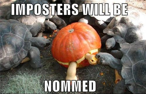 Imposter's Will Be Nommed
