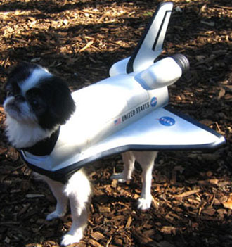 NASA We Have A Dog