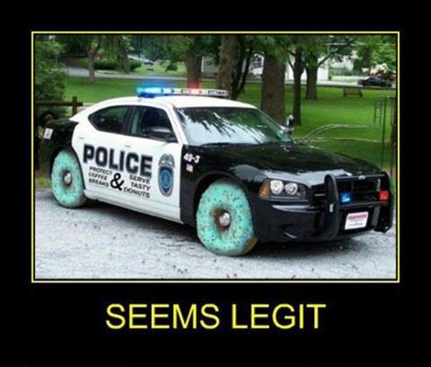 Seems Legit Police Car