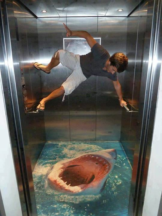 Shark attack in a lift