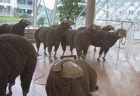 Sheep Phones