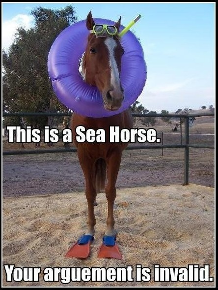 This is a Sea Horse