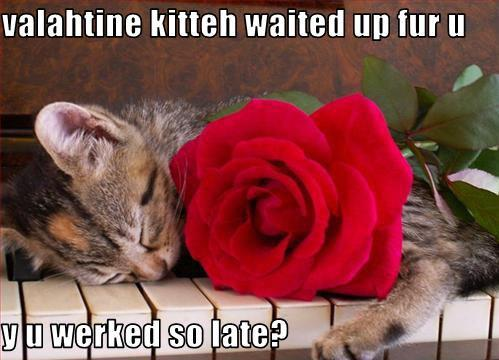 Valahtine kitteh waited up fur u