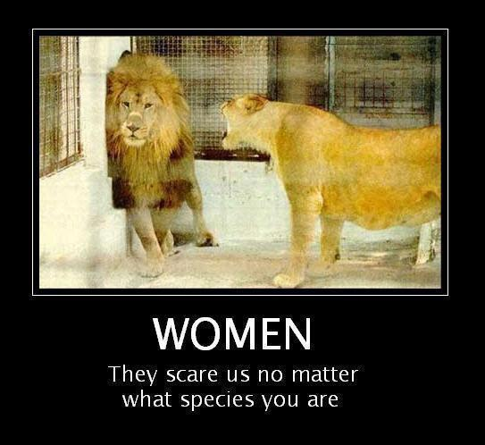 Women They Scare Us No Matter What Species You Are
