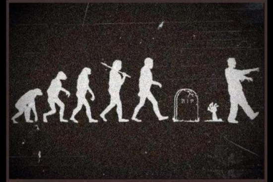 Evolution of errr Zombies