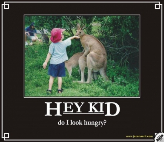 Hay Kid Do I Look Hungry2