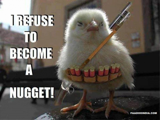 I refuse to become a nugget