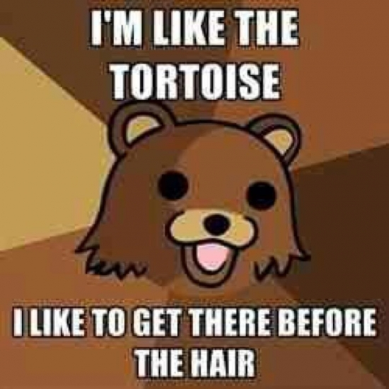 Im Like The Tortoise
