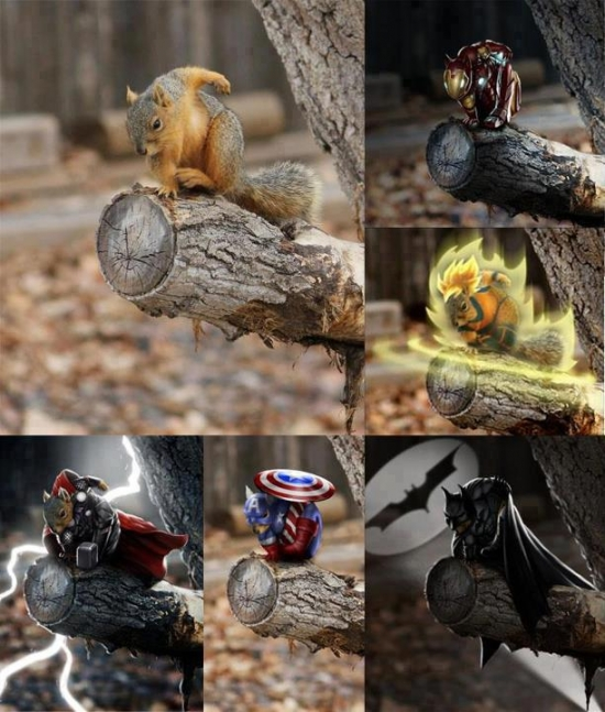 Squirrel can be anything he wants to be
