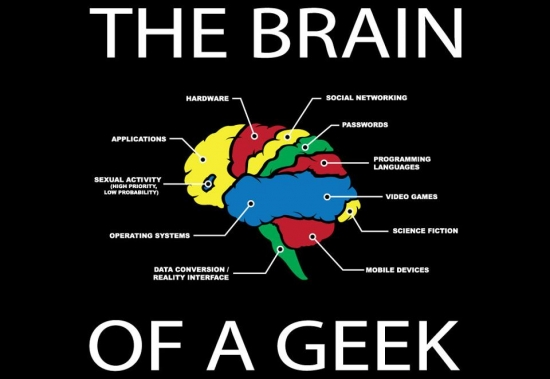 The Brain of a Geek