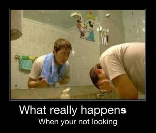 What really happens when your not looking