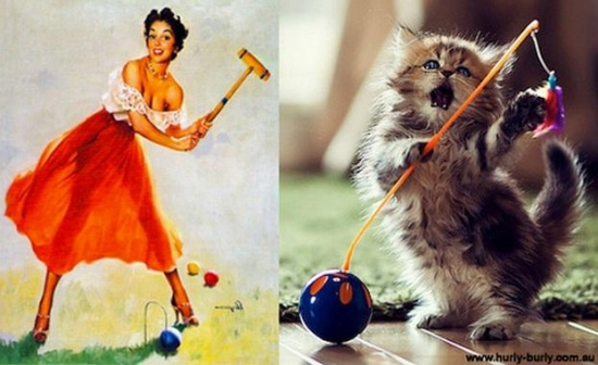 cats that look like pin up girls 3