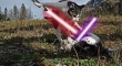 Cats with lightsabers 27