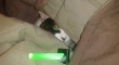 Cats with lightsabers 34