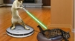 Cats with lightsabers 4