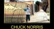 Chuck Norris The Early Years2