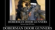 Dobermandoor gunner Counter Its a German Shepard2