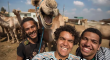 Even camels can photobomb