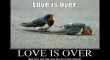 Love is over2