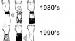 Rock Concerts Audience Evolution