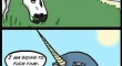 The Origin of unicorns
