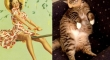 cats that look like pin up girls 2