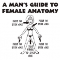 A mans guide to female anatomy