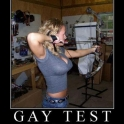 Another gay test for you2