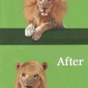 Before and After Lion