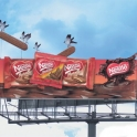 Birds on a Nestle billboard