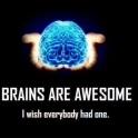 Brains are awesome but..