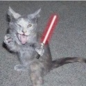 Cats with lightsabers 1