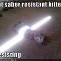 Cats with lightsabers 38