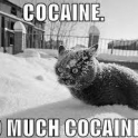 Cocaine so much cocaine