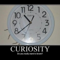 Curiosity Do you really want to know2