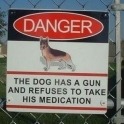 Danger The dog has a gun