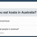 Do you eat Koala in Australia