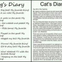 Dogs vs Cats Diary
